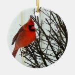 Redbird Ornamentos De Reyes