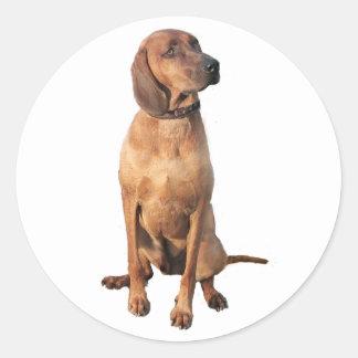 Redbone Coon Hound (A) Classic Round Sticker
