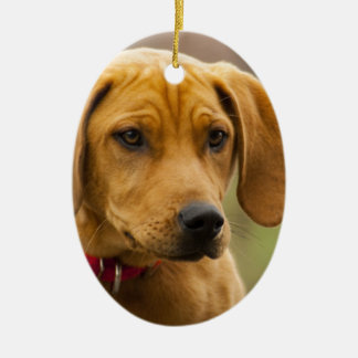 Redbone Coon Hound Dog Puppy Double-Sided Oval Ceramic Christmas Ornament
