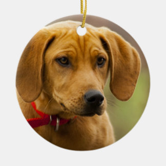 Redbone Coon Hound Dog Puppy Double-Sided Ceramic Round Christmas Ornament