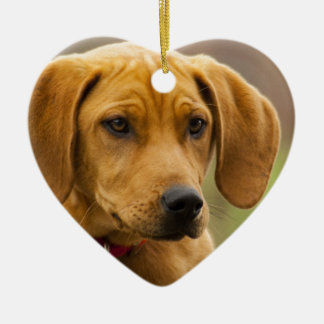 Redbone Coon Hound Dog Puppy Double-Sided Heart Ceramic Christmas Ornament