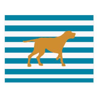 redbone coonhound postcard