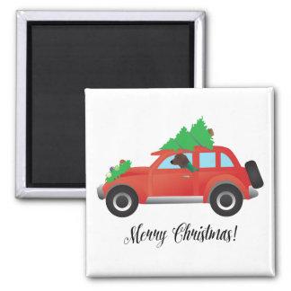 Redbone Hound Driving a Christmas Car Magnet