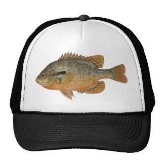 Redbreast Sunfish - Lepomis auritus Mesh Hat