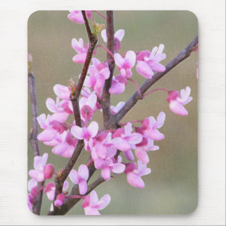 Redbud Bloom Mouse Pad