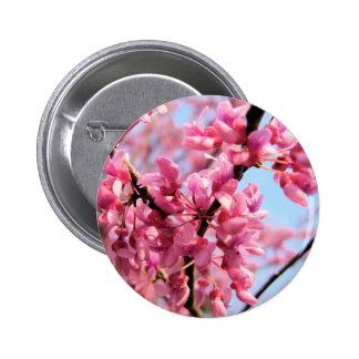Redbud Blossoms Button