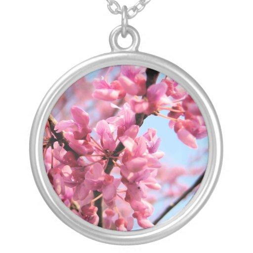 Redbud florece collar