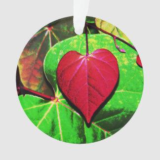 Redbud Heart Leaf