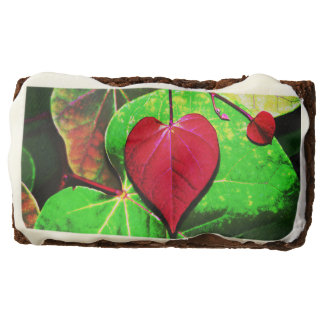 Redbud Heart Leaf Chocolate Brownie