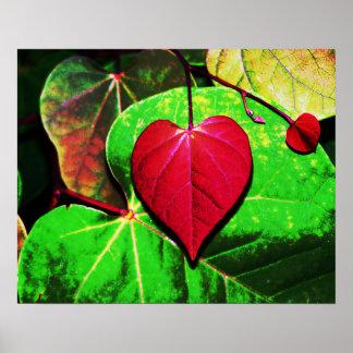 Redbud Heart Leaf Poster