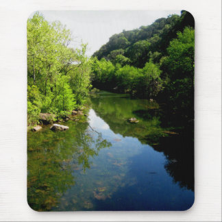 Redbud Isle on Ladybird Lake in Austin Texas Mouse Pad