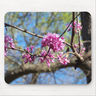 Redbud Tree up close Mouse Pad