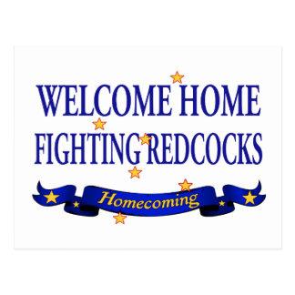 Redcocks que lucha casero agradable tarjeta postal