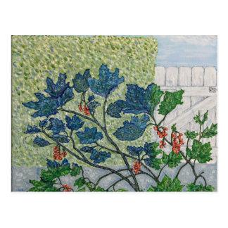 Redcurrant Berries Postcard