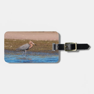 Reddish Egret on North Beach Luggage Tag