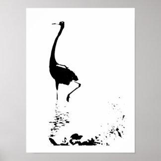 Reddish Egret Print
