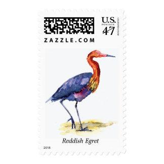 Reddish Egret stamp