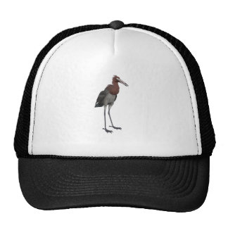 Reddish Egret Trucker Hat