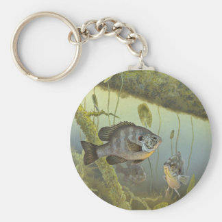Redear Sunfish Basic Round Button Keychain