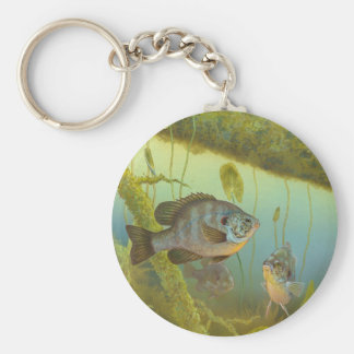 Redear Sunfish Lepomis Microlophus Timothy Knepp Basic Round Button Keychain