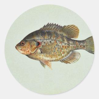 Redear sunfish round stickers