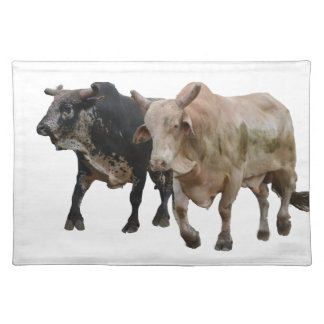 Redeo Cloth Placemat