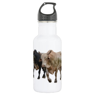 Redeo Stainless Steel Water Bottle