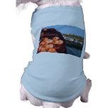 Redes de pesca camisa de mascota