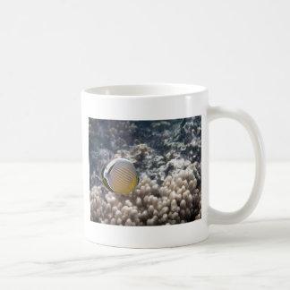 Redfin Butterflyfish (Chaetodon lunulatus) Coffee Mug
