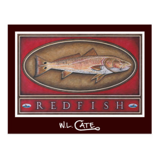 Redfish Postcards