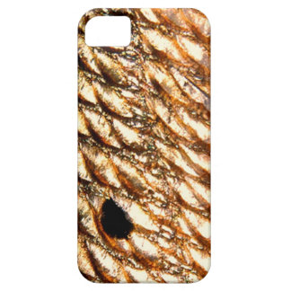 """""""Redfish"""" - Red Drum by PatternWear© iPhone SE/5/5s Case"""