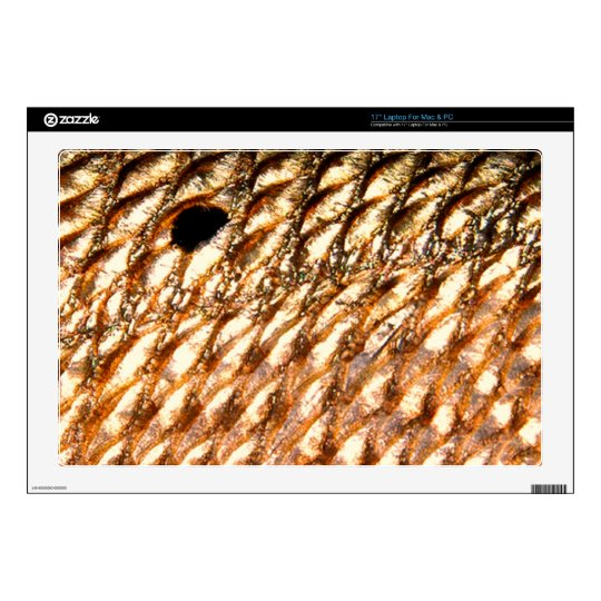 """""""Redfish"""" - Red Drum by PatternWear© Skin For Laptop"""