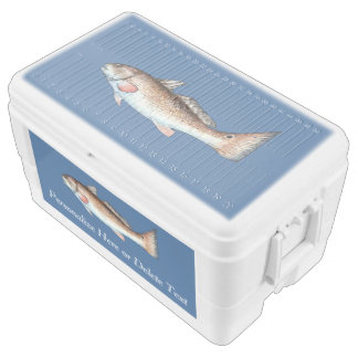 Redfish Red Drum Cooler