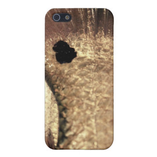Redfish Tail iPhone SE/5/5s Cover