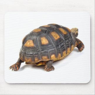 Redfoot Tortoise Walking Mousepads