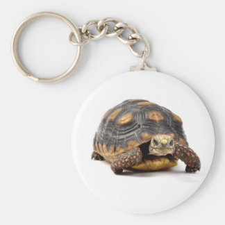 Redfoot Turtle Gifts Keychain