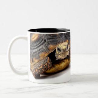 Redfoot Turtle Gifts Two-Tone Coffee Mug