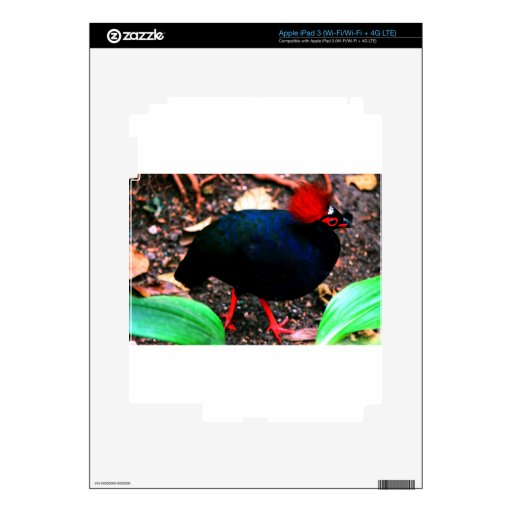 Redhead iPad 3 Skin