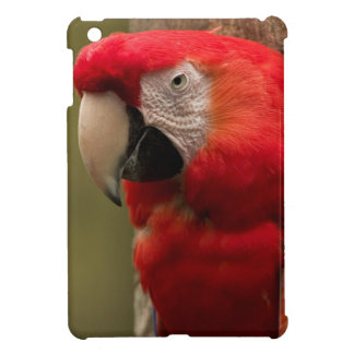 Redhead Cover For The iPad Mini