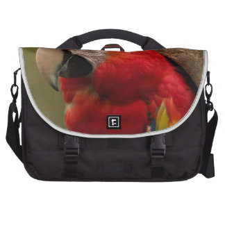 Redhead Commuter Bag