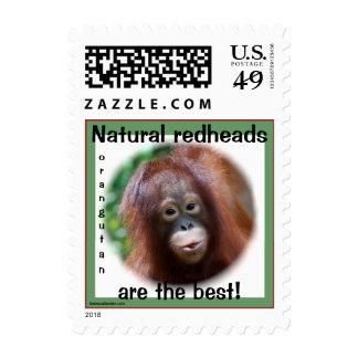 Redhead natural del orangután estampillas