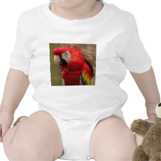 Redhead Traje De Bebé