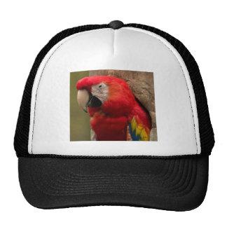 Redhead Trucker Hat