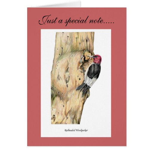 Redheaded Woodpecker Greeting Cards