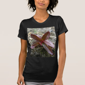 Redish Plant Sprout T Shirt