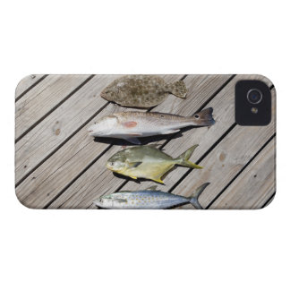 Redish Pompono iPhone 4 Cover
