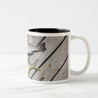 Redish Pompono Two-Tone Coffee Mug