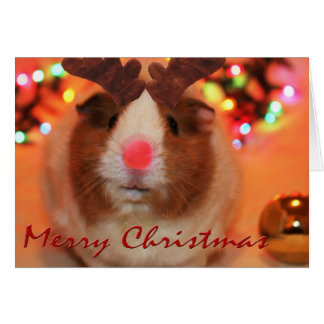 Rednose Christmas Greeting Card