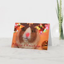 Rednose Christmas Holiday Card
