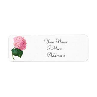 Redoute Pink Hydrangea Avery Address Labels